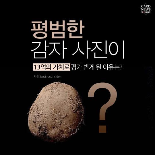 13억 짜리 감자가 있다?