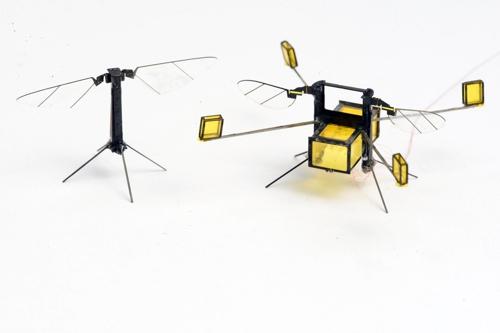 초소형 곤충 로봇 '로보비' 업그레이