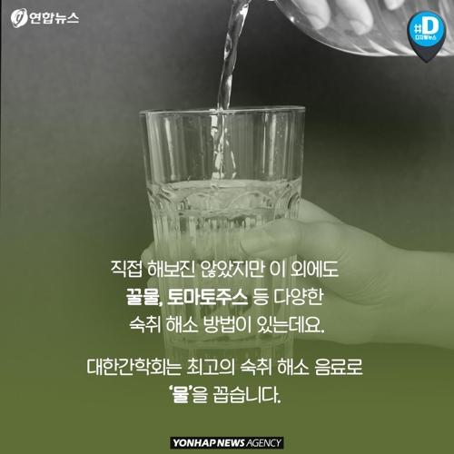 배즙·초코우유·피클… 소문난 숙취 해
