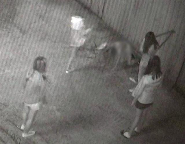'부산 여중생 폭행' 가해 10대들