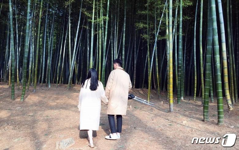 부산에서 대나무 숲을 본 적 있나요