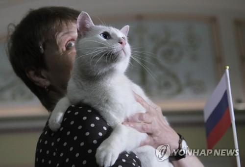 '용하냥' 러시아 점쟁이 고양이 예언