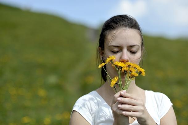 몸과 마음을 치료하는 향기