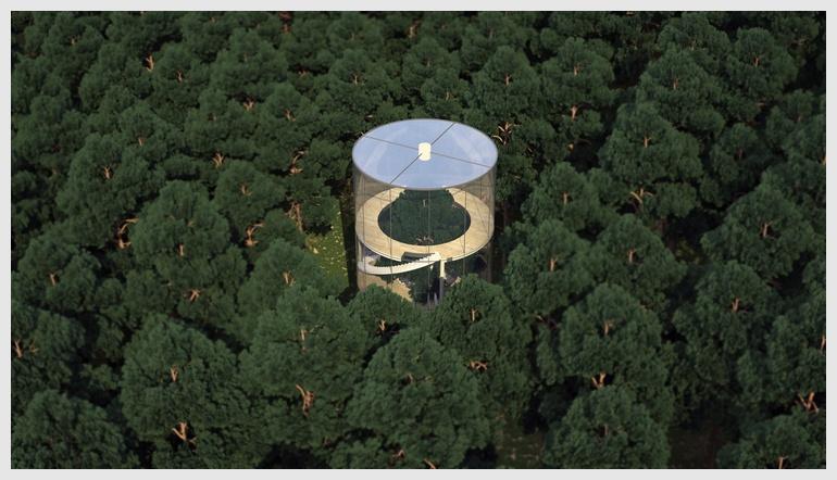 나무를 품은 숲속의 집
