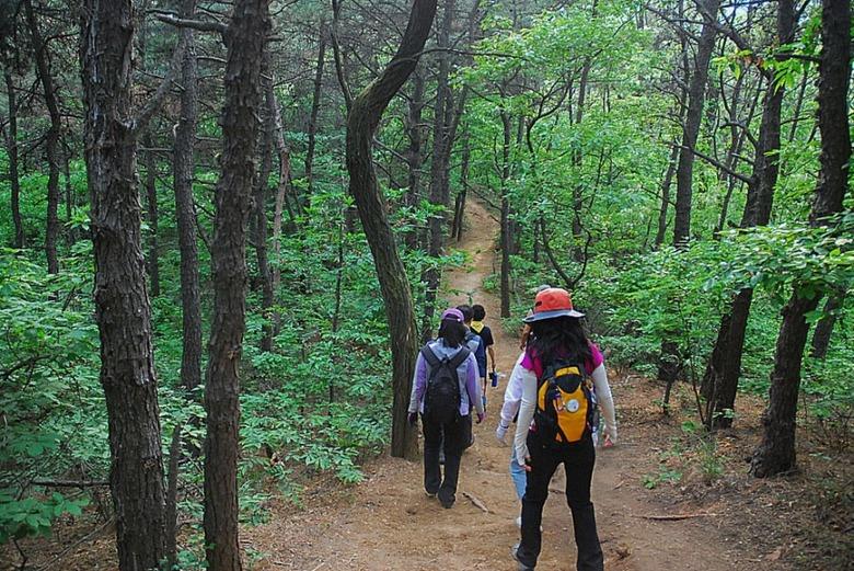 2016년 11월 추천 걷기여행 길