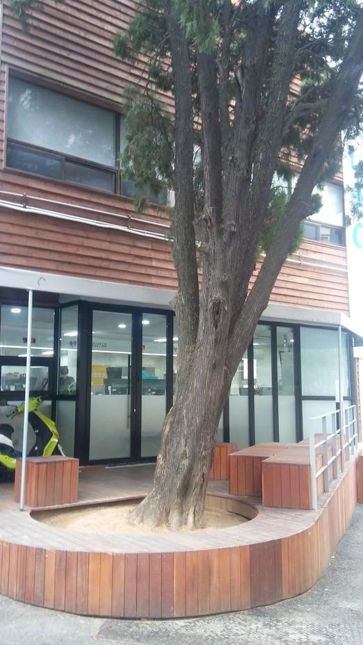 동사무소 뒤 빈집에 건축가가 눈독 들
