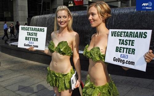 채식주의가 무조건 건강을 보장하지 않
