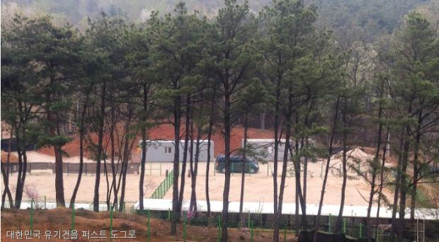 '유기견을 퍼스트 도그로' 환경 기자