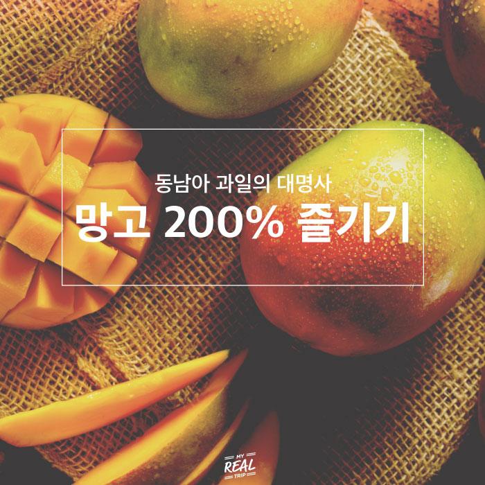 동남아 과일 망고 200% 즐기기