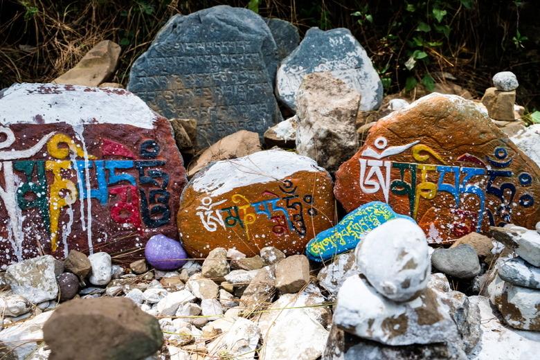 인도에서 외치는 '프리 티벳'