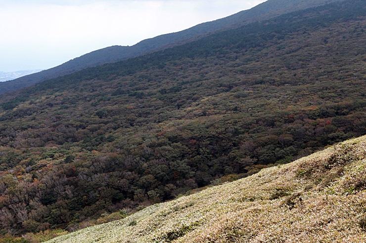 사라오름 - 한라산이 품고 있는 비경
