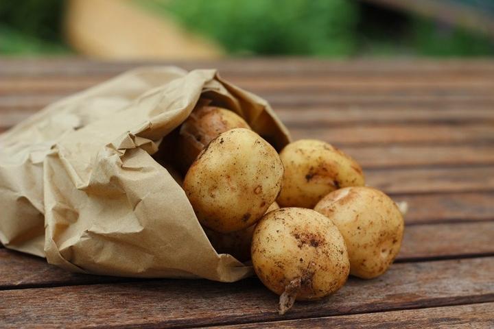 감자탕의 감자가 그 감자?
