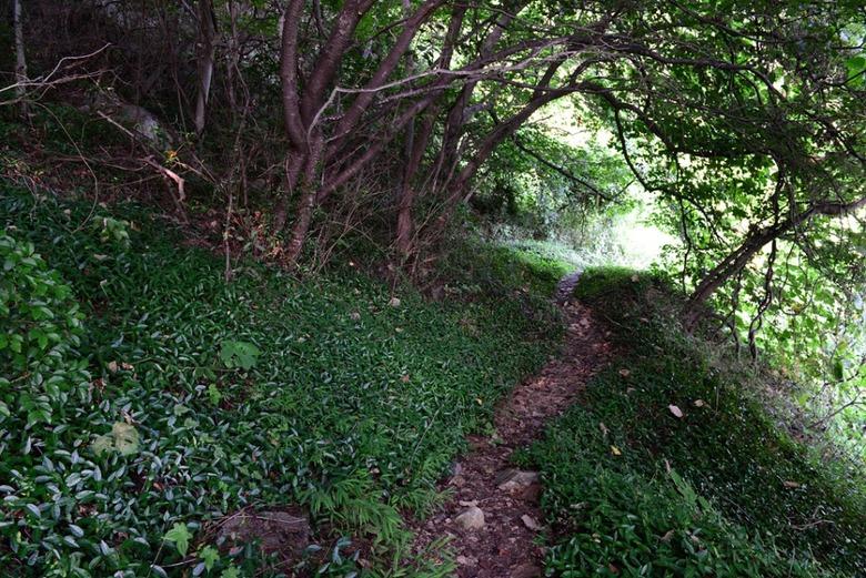 가을의 길목에서 남쪽 바다를 걷다