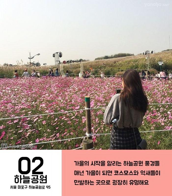 서울 가을 피크닉 공원 TOP5