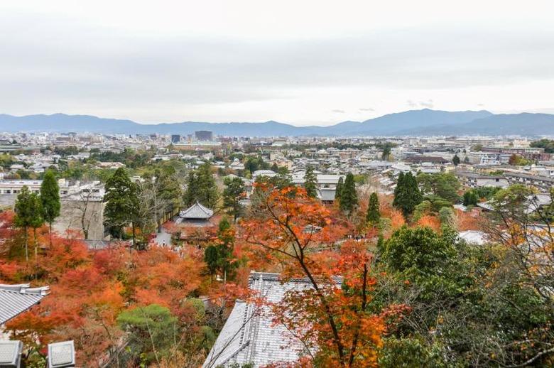 단풍을 즐길 수 있는 일본의 명소