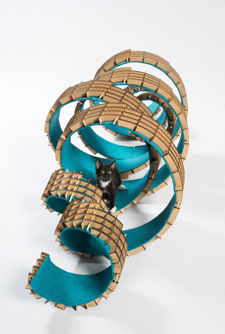 야옹! 길거리 고양이들을 위한 친환경