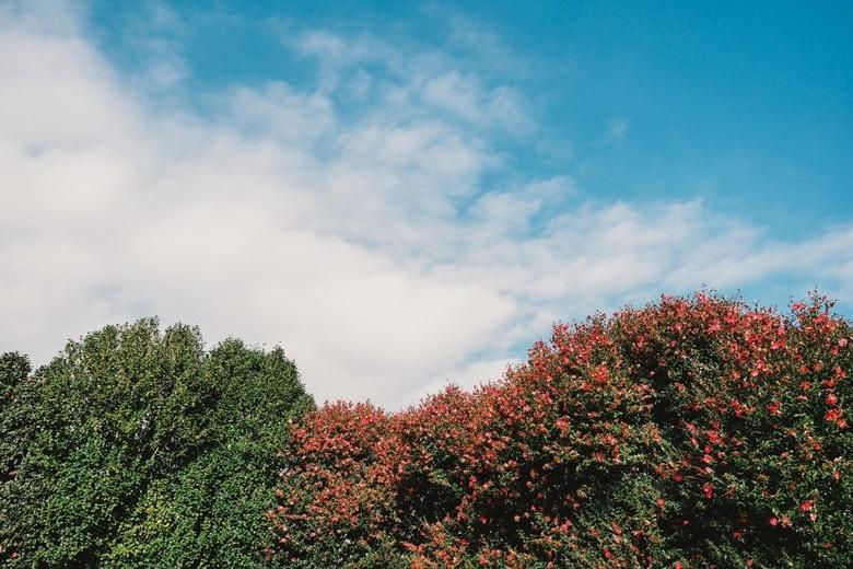 11월 제주도 가을 문턱 여행