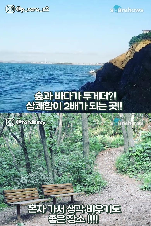 숲 속부터 바다까지 걷기 좋은 코스
