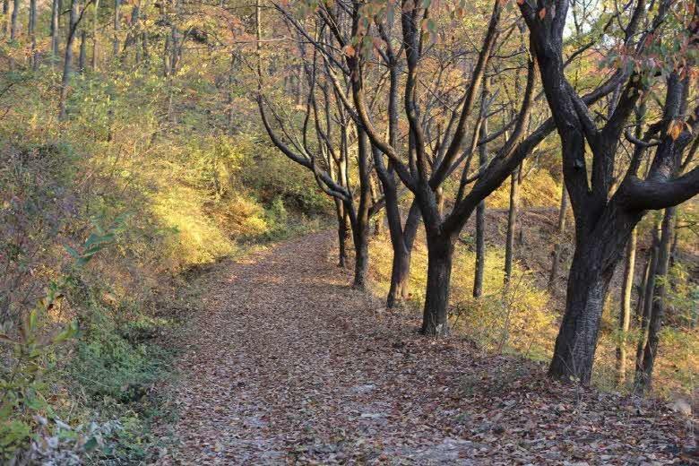 2017년 12월 추천 걷기여행길 1