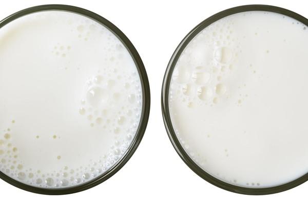남은 우유, 영리하게 활용하는 방법