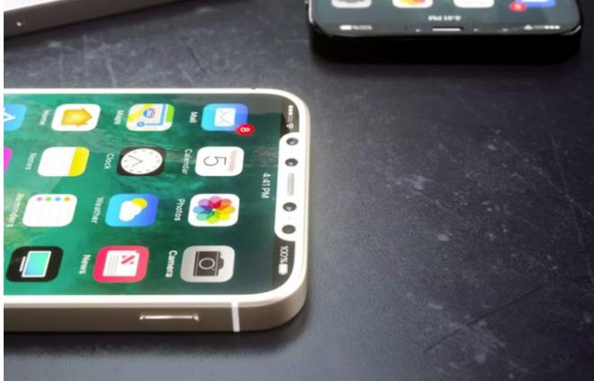 아이폰X'의 저가형 제품 '아이폰Xc