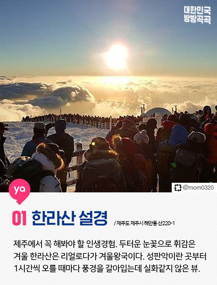 제주의 겨울핫플 TOP6