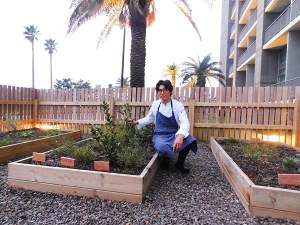 """김영원 밀리우 헤드셰프는 텃밭에서 채소를 키우며 """"손님들의 테이블에 신선한 식재료를 제공하고, 음식물 찌꺼기로 비료를 만들어 거름으로 되돌리는 선순환 구조를 만들고 싶다""""고 말했다. [사진=리얼푸드]"""