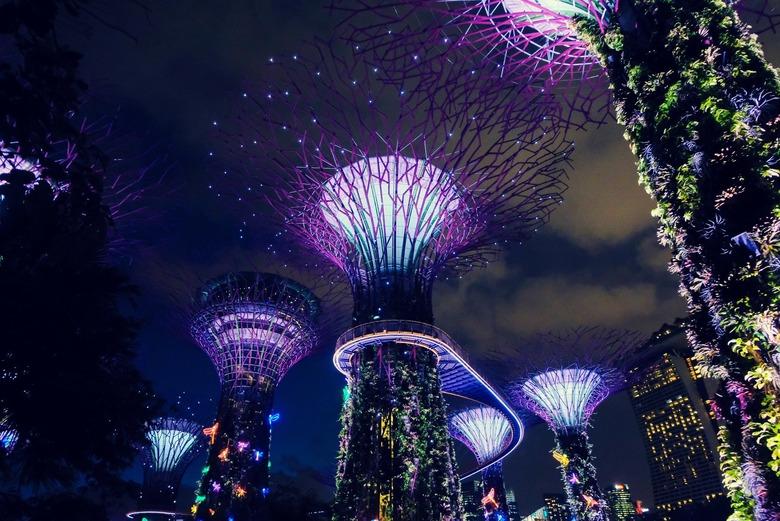동화같은 꽃의 정원, 싱가포르 가든스