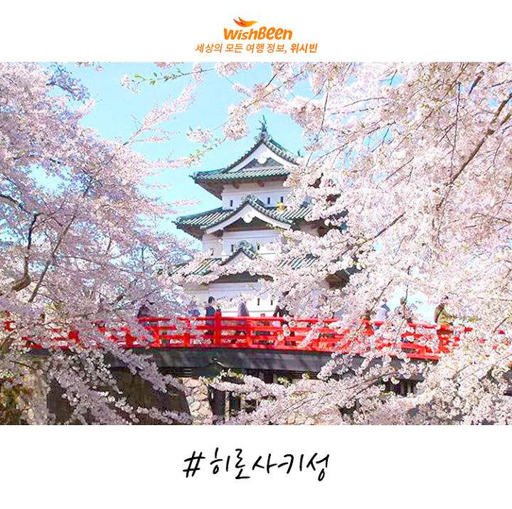 봄이면 더욱 가고 싶은, 일본 아오모