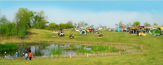 봄바람 살랑살랑~ 서울에서 캠핑하자
