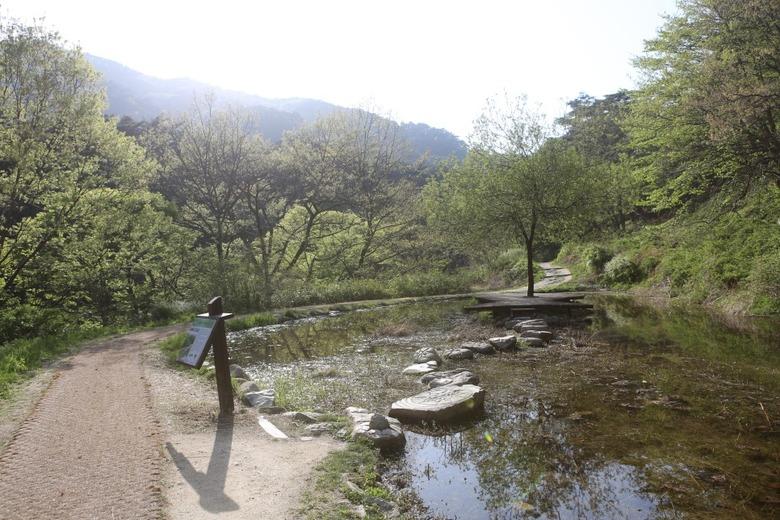 봄나들이로 다녀오기 좋은 관광공사