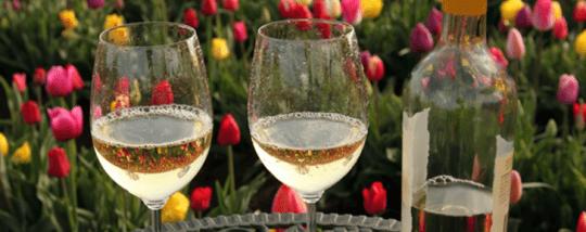 역사상 와인은 세 번 죽었다
