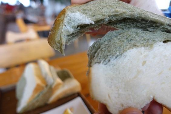 제주 빵지순례 2탄