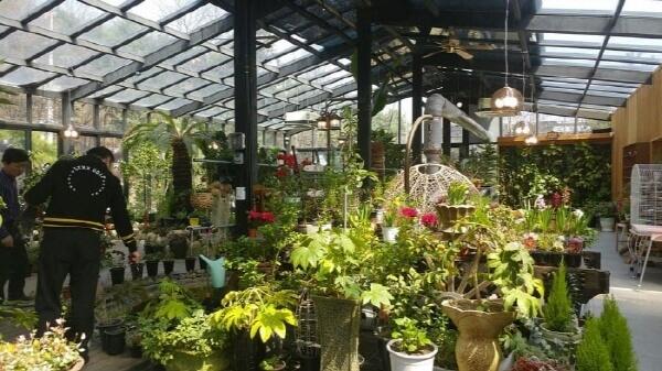 꽃과 화분 가득한 식물원 카페 추천
