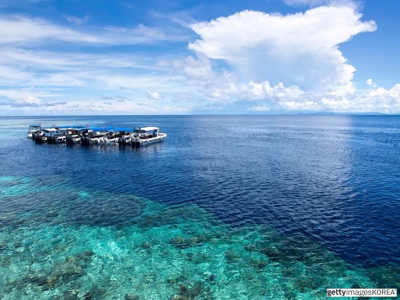 세계 다이버들이 사랑한 바다 속 명소