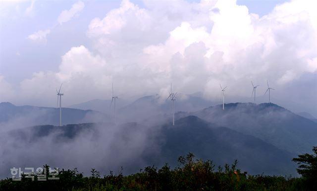 폭염 날릴 자연의 바람, 여기는 바람