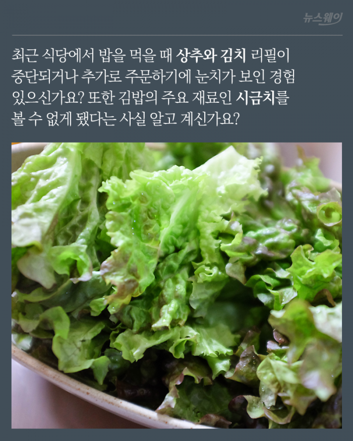 김밥에서 시금치가 사라진 이유