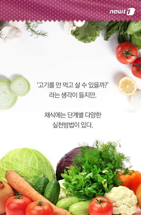 단계별 채식주의자
