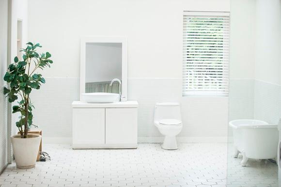 세균·곰팡이를 퇴치하자, 화장실 청소