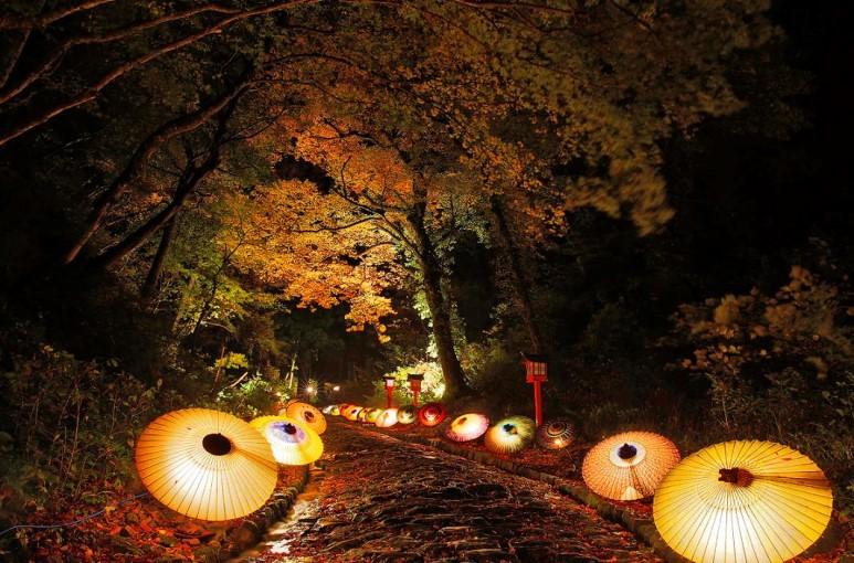 가을여행 못정했다면 여기 일본 돗토리