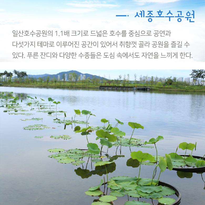 도시민들의 휴식처 우리나라 호수공원│