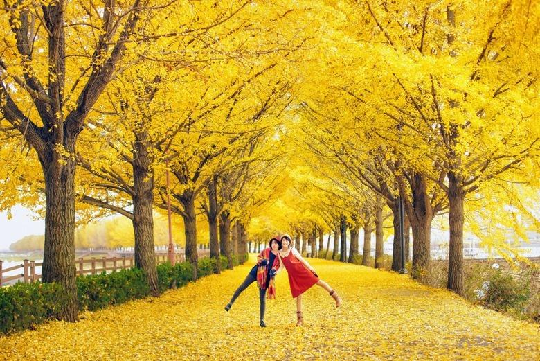 한국관광공사가 추천하는 10월의 가볼