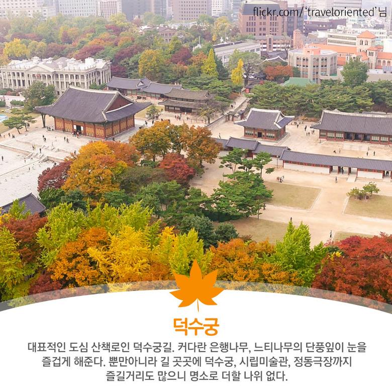 주말에 다녀오기 좋은 서울 단풍 명소