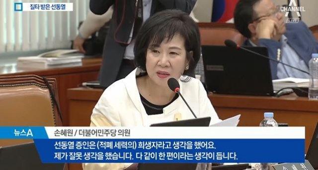 """손혜원, '선동열 국감' 역풍…""""수준"""