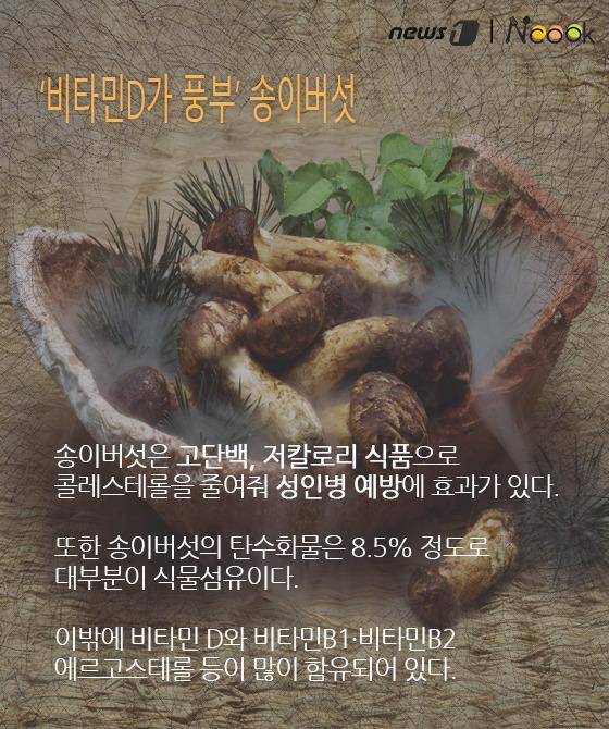 산속의 진미, 신선들의 음식 '송이버