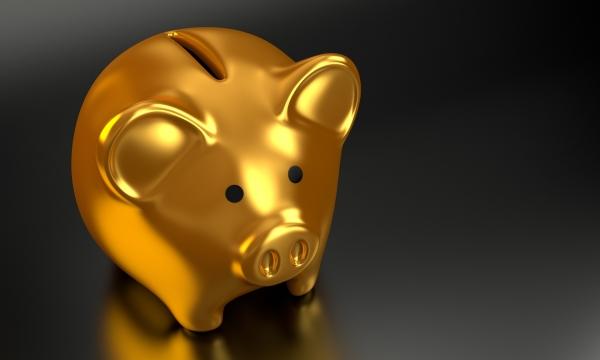 황금돼지해 2030세대의 '재테크'