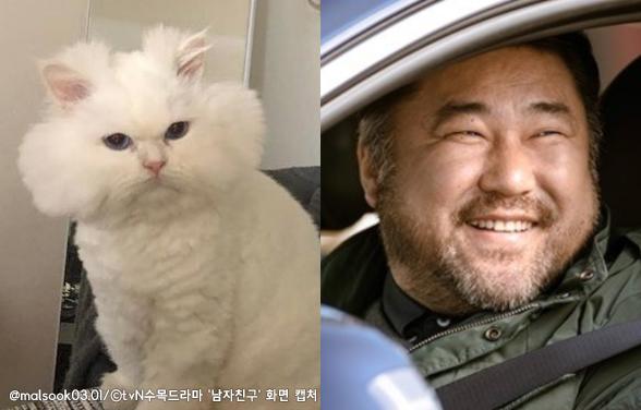 드라마 '남자친구' 출연 배우와 싱크