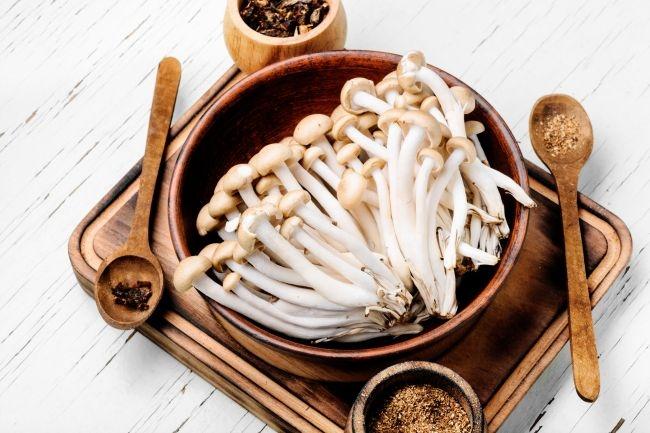 흔한 버섯, 해외에선 '버섯 붐'이