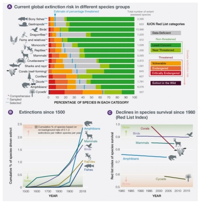 지구평가 보고서 멸종위기 생물 그래프 [IPBES 제공]