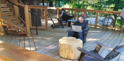 """MS 직원들 나무집에서 일한다…""""자연"""
